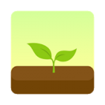 Forest Stay focused 4.1.6 APK