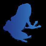 Vuze Torrent Downloader 2.1 APK Patched