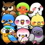 Bird Life v 1.6.7 Hack MOD APK (Money)