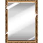 Best Mirror 3.4 APK Ad-Free