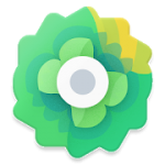 Moxy Icons 2.5 APK Patched