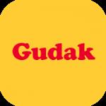 Gudak Cam 1.0.040 APK Paid
