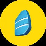Rosetta Stone Learn to Speak & Read New Languages 5.6.0 APK Unlocked