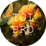 Text Over Image PRO Write Text On Photos, Memes 1.1.8 APK Paid