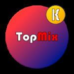 TopMix Kwgt v500+