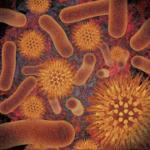 Infectious Disease Compendium v 38.08.31 APK
