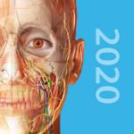 Human Anatomy Atlas 2020Complete 3D Human Body 2020.0.73 APK Free Iaps