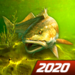 My Fishing World – Realistic fishing v 1.11.89 hack mod apk (Money / VIP)
